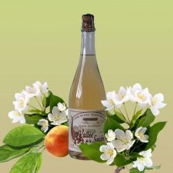 Cidre Blanc de Pommes Vallée de la Seiche