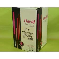 IGP Côtes du Tarn rouge David BIB 5L
