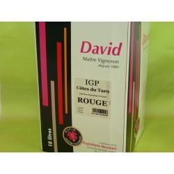 IGP Côtes du Tarn rouge David BIB 10L